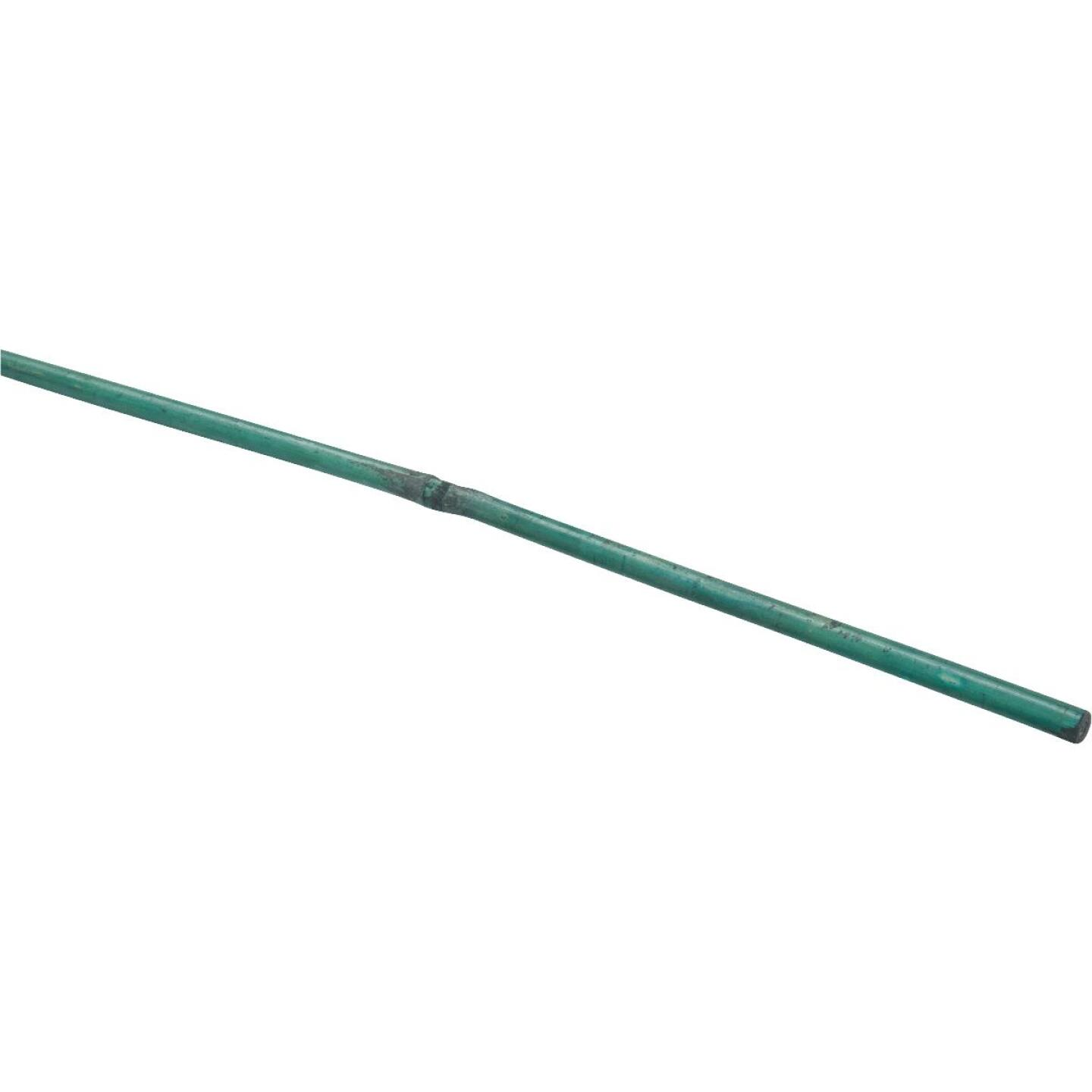 Bond 4 Ft. Green Bamboo Plant Stakes (25-Pack) Image 23